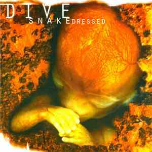 Dive - Snakedressed FLAC
