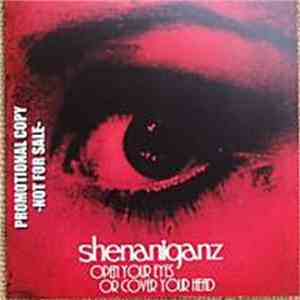 Shenaniganz - Open Your Eyes Or Cover Your Head FLAC